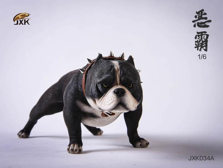 jxk-dog34-01