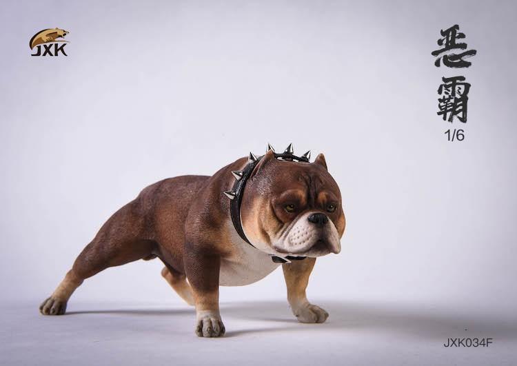 jxk-dog34-06