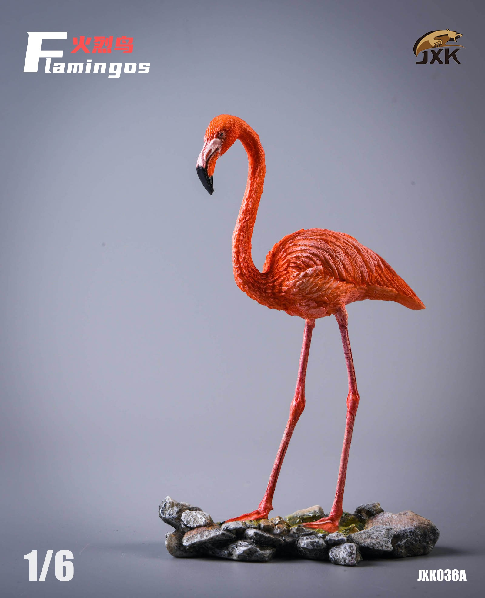 jxk-flamingo01