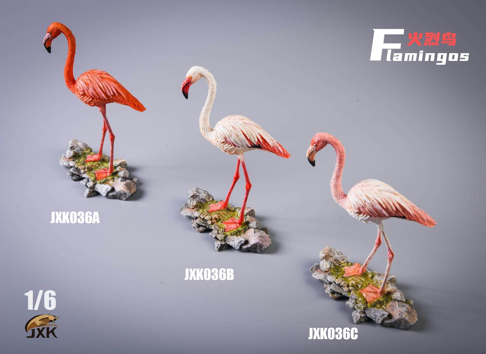 jxk-flamingo04