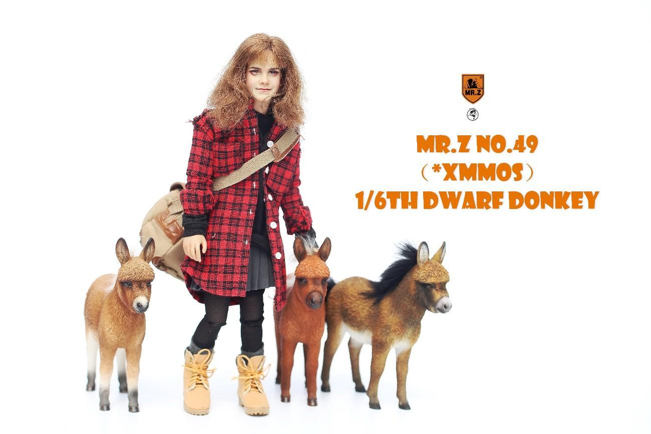 mrZ-dwarfdonkey01