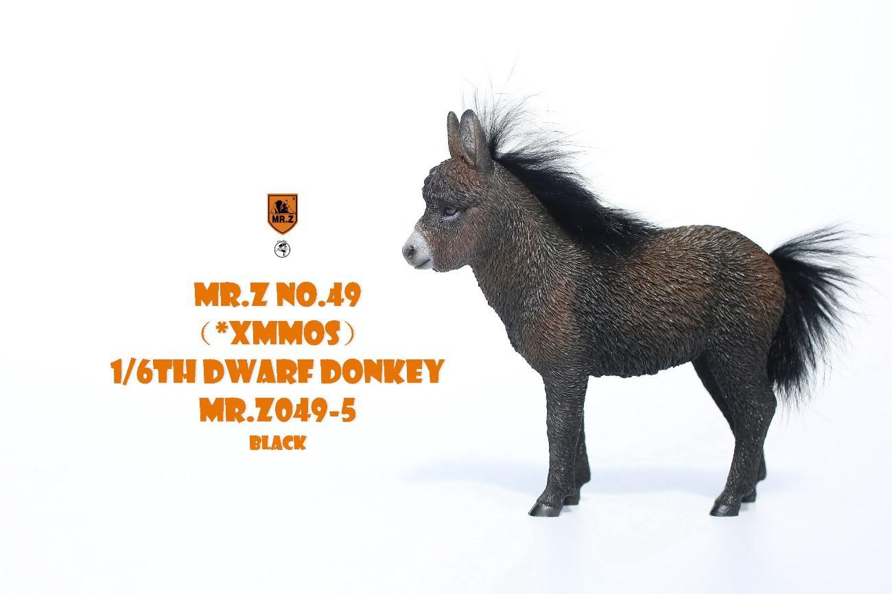 mrZ-dwarfdonkey06