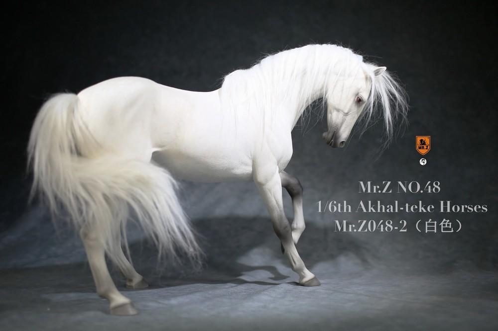 mrZ-horse048-02