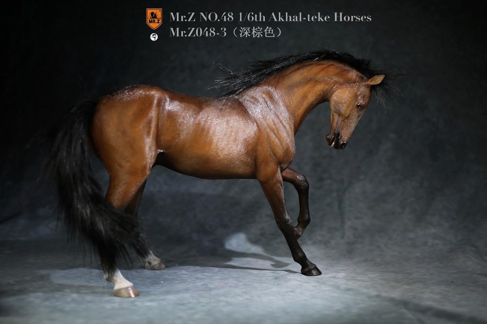 mrZ-horse048-03