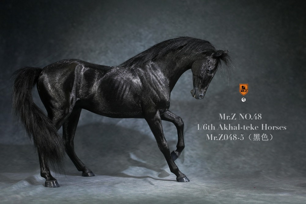 mrZ-horse048-05