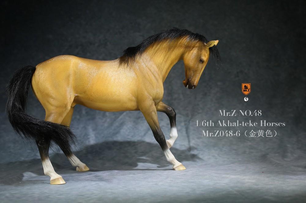 mrZ-horse048-06