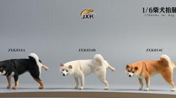 jxK-dog-pee