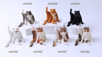 jxk-tomcat00